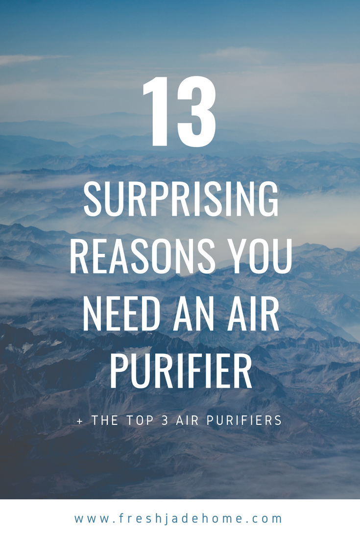 13 Surprising Reasons You Need An Air Purifier